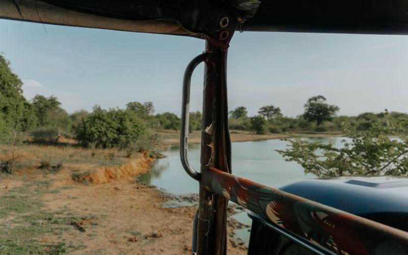 Uda Walawe safari
