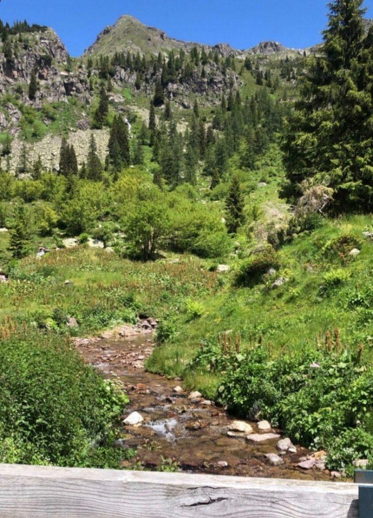 lago branchino sentiero dei fiori